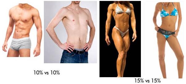 Mit mutat a testzsírszázalék?